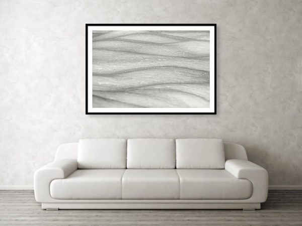 Zimní mikrokrajina - Minimalistický černobílý fotoobraz
