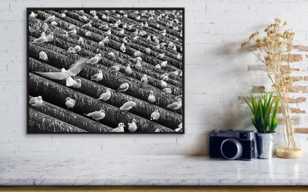 "4. Matte finish canvas fine art photography print (canvas size: 51 cm x 41 cm) in ""horizontal"" aspect ratio. Black wooden frame in contemporary style. Wrap: 1.5"" Stretcher Bars (White Sides)."
