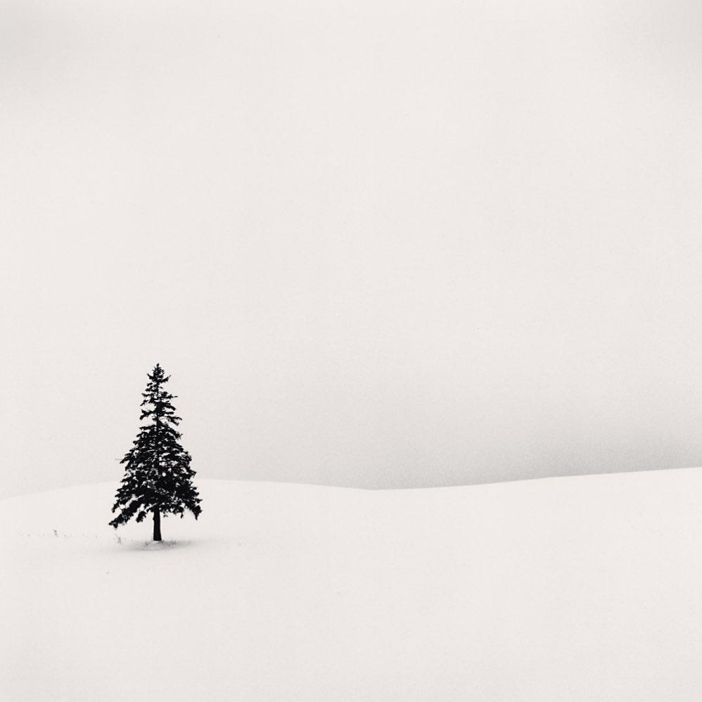 Osamocený strom (Lone Tree), Hokkaido, Japan. 2004, Minimalistická černobílá fotografie od Michaela Kenny