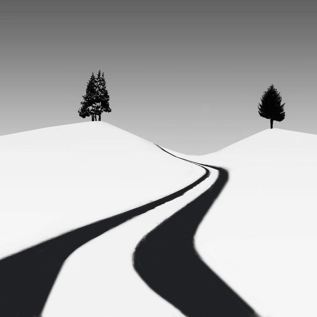 Cesta mezi stromy - Andrej Šafhalter