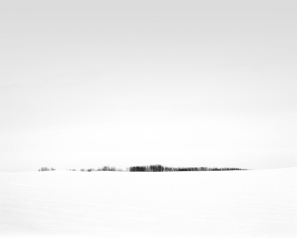 Stromy nad horizontem od Oliviera Du Tre