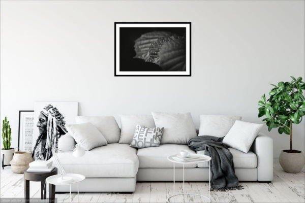 Visualization of Black & White Fine Art Photography Print on the interior wall - Three Leaves