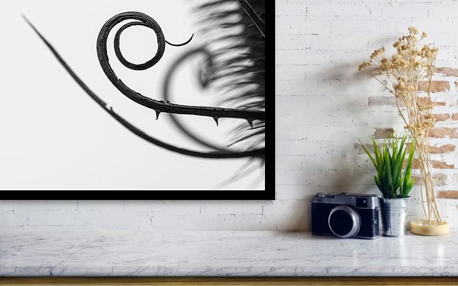Spirála - Minimalistický černobílý fotoobraz - Vizualizace na stěně