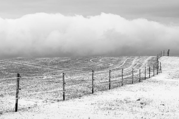 The undulating pasture fence in winter - Minimalist photography print