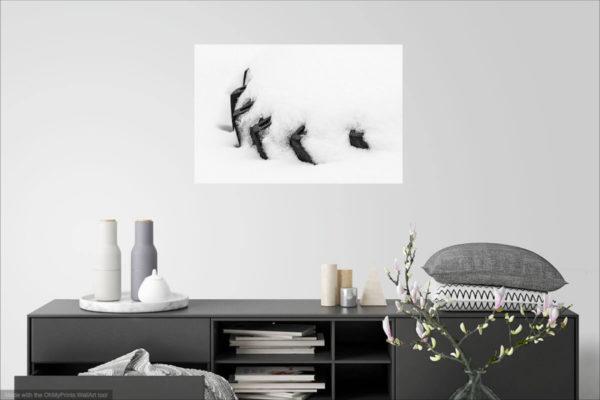 Pneumatika ve sněhu - Minimalistický černobílý fotoobraz - Vizualizace na stěně