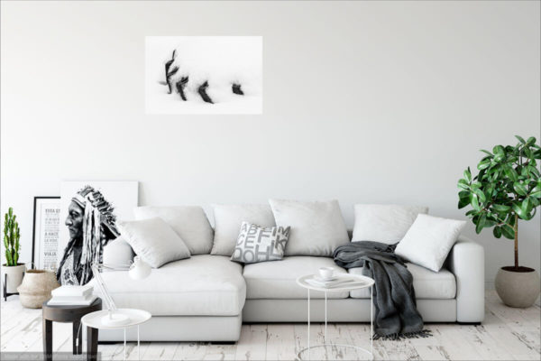 Wall art visualization of black&white minimalist photograph of a tire in snow