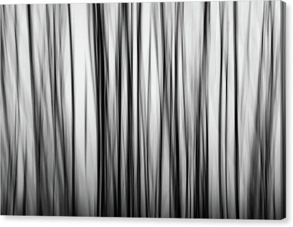 """Černobílý minimalistický fotoobraz """"Abstraktní strom"""" na plátně"""