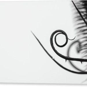 """Černobílý minimalistický fotoobraz """"Spirála"""" na plátně"""
