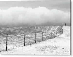 """Černobílý minimalistický fotoobraz """"Zimní krajina"""" na plátně"""
