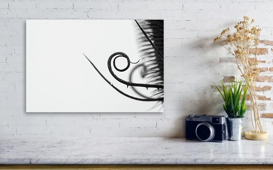 Vizualizace černobílé minimalistické fotografie o velikosti 51 x 34 cm vytištěná na hliníkové desce.