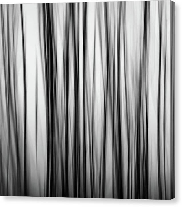 Abstraktní černobílá fotografie na plátně - čtverec, 41 x 41 cm.