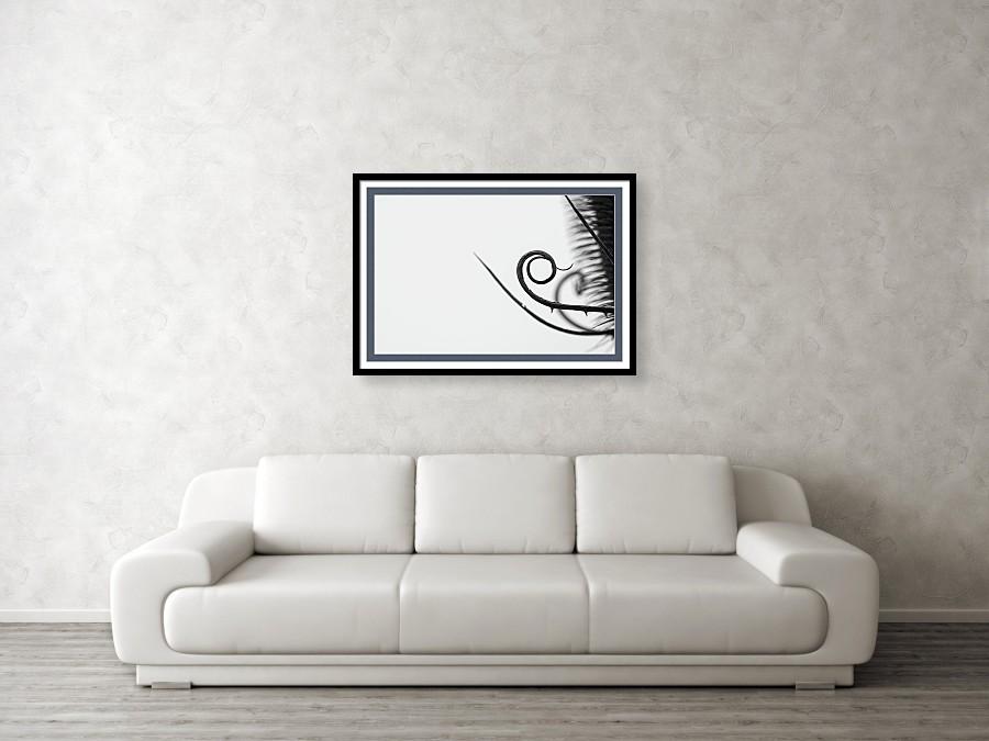 Černobílá fotografie na zeď - Vizualizace