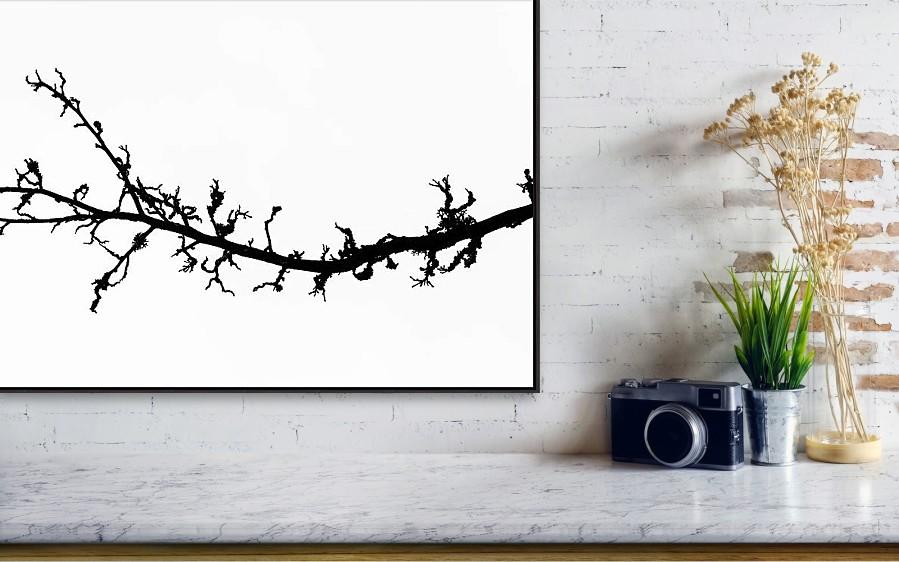 Vizualizace černobílého minimalistického fotoobrazu na stěně - tisk na plátno o veliksti 76 x 44 cm.