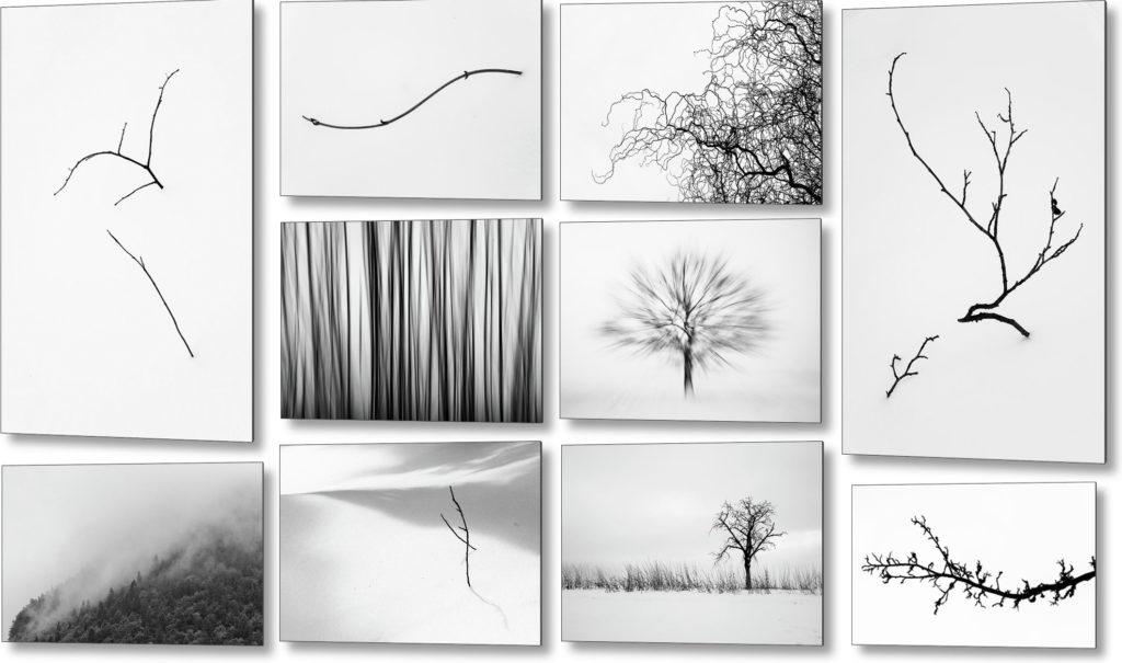 Umělecké fotoobrazy